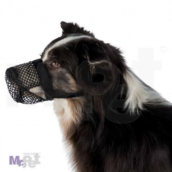 TRIXIE zaštitna korpa protiv trovanja pasa