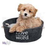 TRIXIE Lian ležaljka za pse, antracit boje