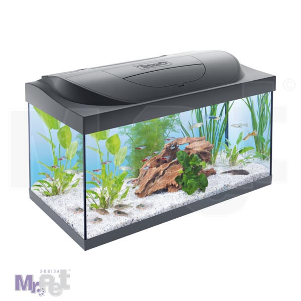 TETRA Akvarijum za ribice Start Line LED Tank 54 l