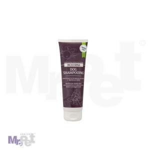 INODORINA šampon za tamnu dlaku 250 ml
