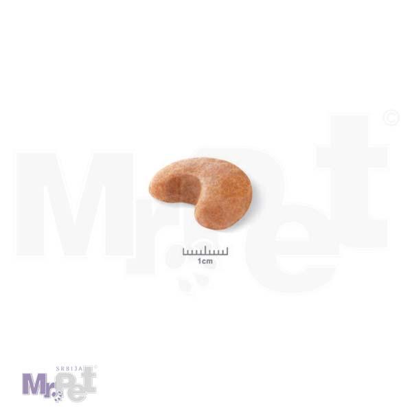 french bulldog adult food 2