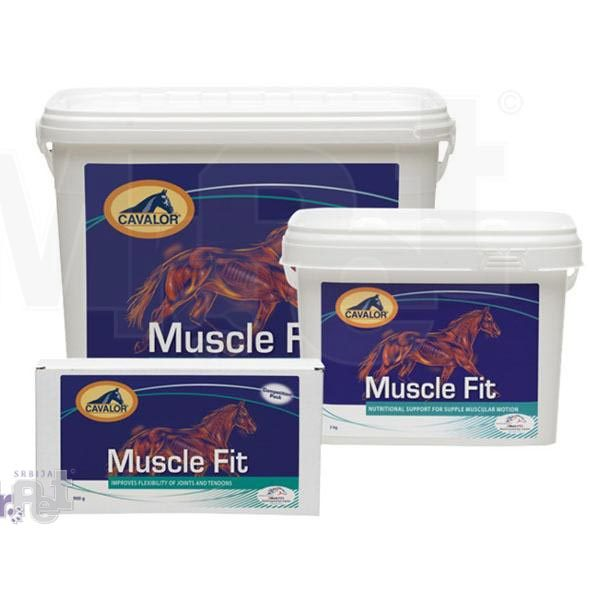 muscle fit all 2