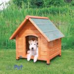 176237_PHO_PRO_DOG_39530-1