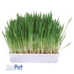 TRIXIE trava za glodare 100 g