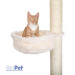 184712_PHO_PRO_CAT_CLIP_43921-1