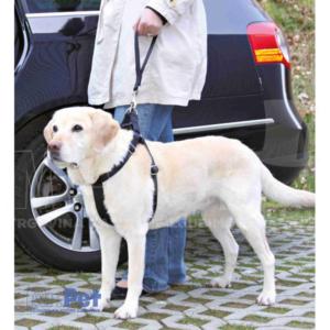 TRIXIE povodac za psa u automobilu