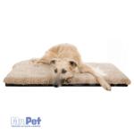 226530_PHO_PRO_DOG_CLIP_37145-37146-37147-1