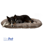 233276_PHO_PRO_DOG_CLIP_28242-1