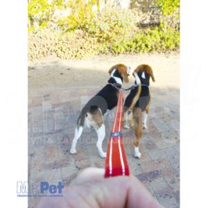 Rogz Utility M 16 mm Snake Split Lead razdelnik povoca za pse